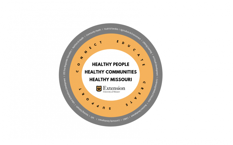 Community Wellbeing Report